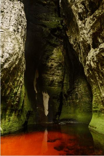 Área protegida Chiribiquete