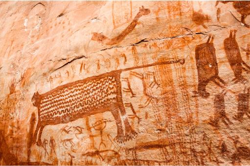 Pinturas Rupestres en el Chiribiquete